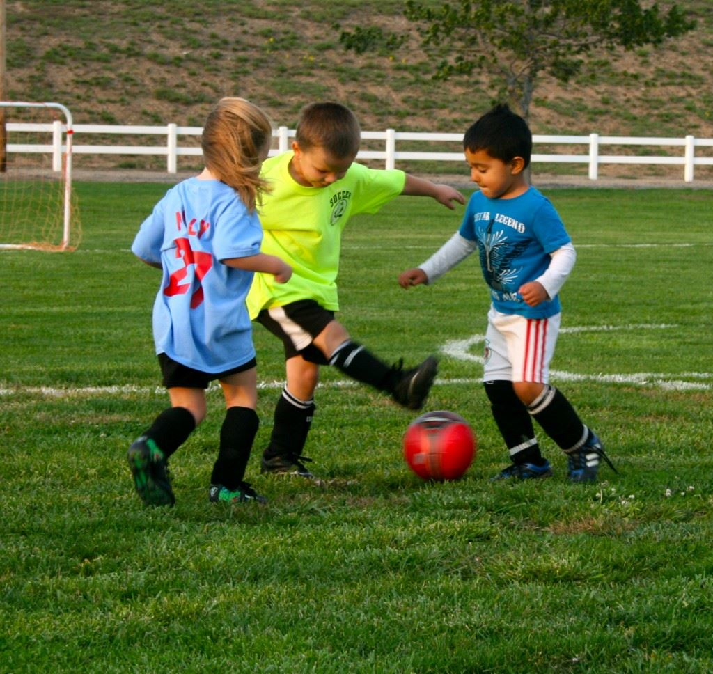 Small children playing soccer